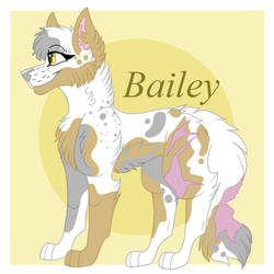2018 Bailey Reference