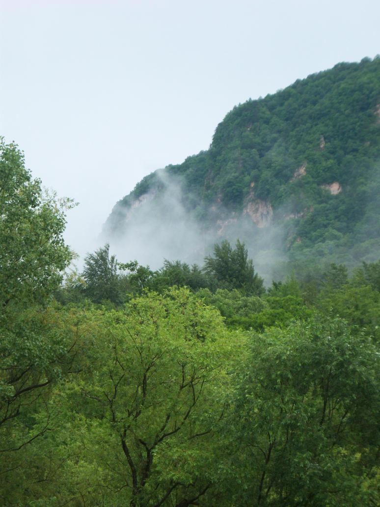 The Morning Fog by siriusianin