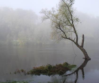 Fog on the Dordogne river 07