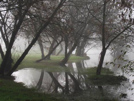 Fog on the Dordogne river 09