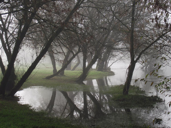 Fog on the Dordogne river 09 by HermitCrabStock