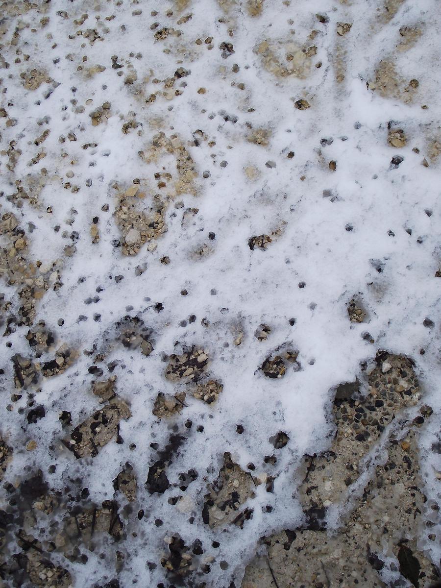 Snow texture 004