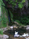 Briance Waterfall and swan 1