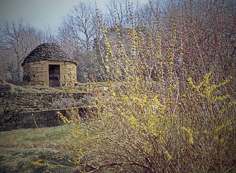 Stone hut 31