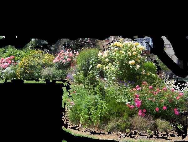 Flowered garden png 02