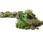 Flowered garden png 02