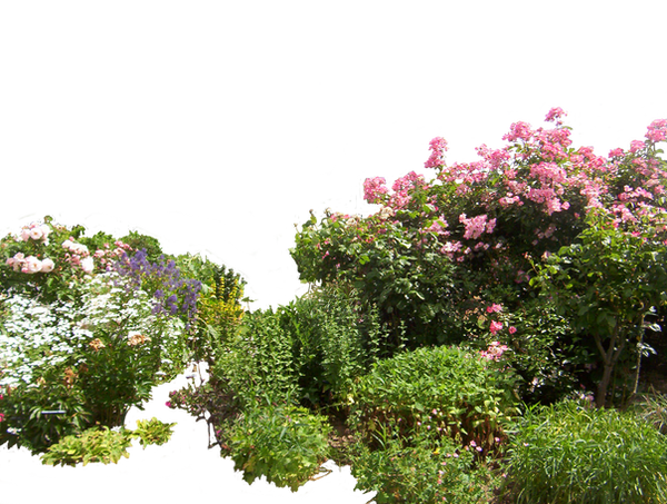 Flowered garden png 01 by HermitCrabStock