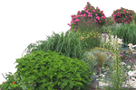 Flowered garden png 05