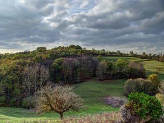 Landscape by HermitCrabStock