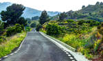 Valencia 41 HDR - Road in the hills