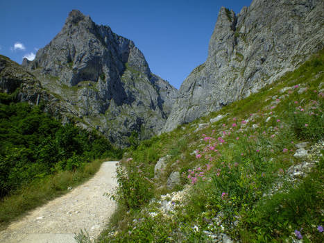 Picos de Europa 128 - Path in the mountain