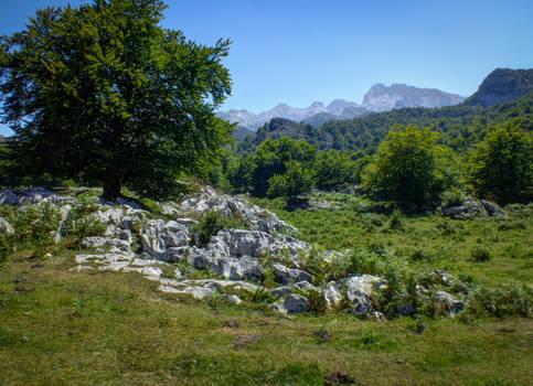 Picos de Europa 136 - Mountains