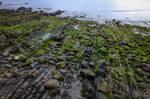 Seaside rocks texture - 166