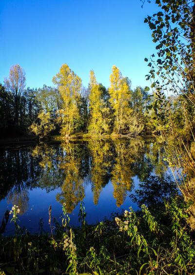 Fall landscape 2012.04 - lake by HermitCrabStock