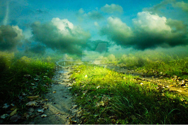 Premade 05 - Path in the grass by HermitCrabStock