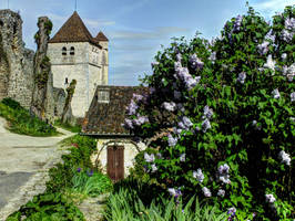 St Cirq Lapopie 20 - medieval church and lilac by HermitCrabStock