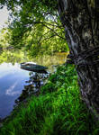 Dordogne riverside at spring 01