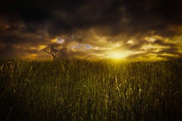 Premade 24 - Sunset by HermitCrabStock
