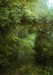 A Door in the Forest - Premade BG
