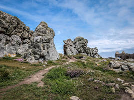 Ouessant Island 19 -  Rocks and Heather by HermitCrabStock