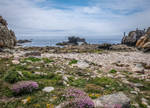 Ouessant Island 20 -  Rocks and Heather