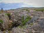 Asturias 17082 - Rocks and Chasm