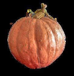 Halloween 1703 - Pumpkin