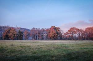 Landscape November 2017 - 16 by HermitCrabStock