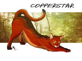 Copperstar by siren-of-hades