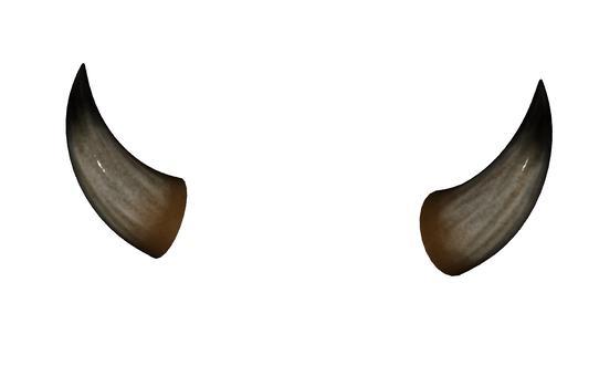 Horns Horns