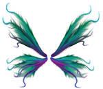 wings 35