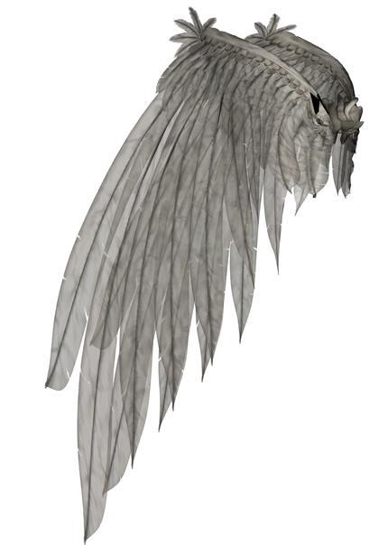 Wings 59