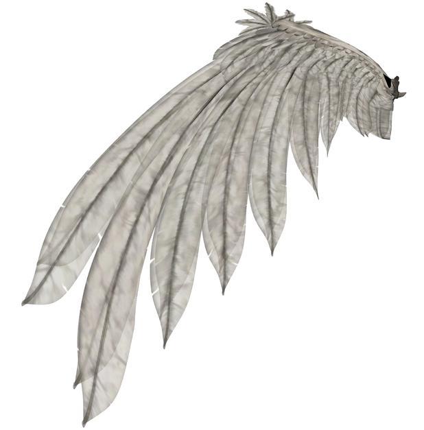 Wings 60