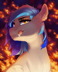 Coldfire Bust
