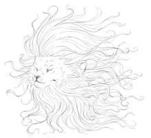 :Lion: by Pascalou