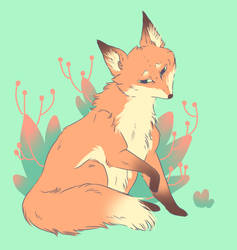 o-fi Fox Request