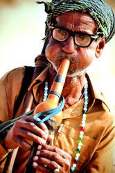 mr snake charmer