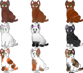 Cute Kitty Adopts by PoppywhisperSkywish