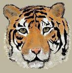 Bengal Tiger by Pandoras-Encore