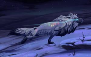 Aurora Chaser