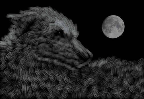 Wolf Looks at the Moon