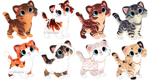 Kitten Adopts 3 [#1 is now 100 points/1$} by Chintzy-Adopts
