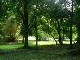 Alas.. Thy trees' by Endless-Sonata