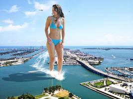 Jennifer Lawrence enters Miami by joe116able