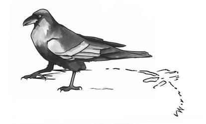 Snow Raven 2 by EndlessDiamondSky