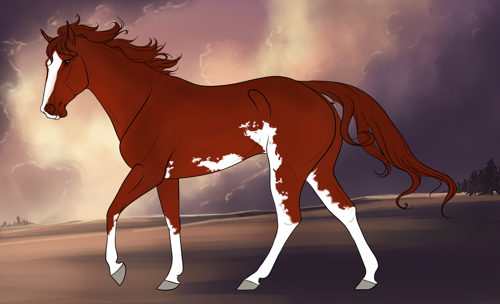 458 Marlboro Red by turf-king