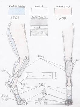 Foot Study New Build