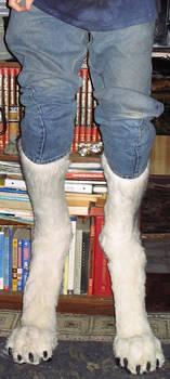 New Build Digitigrade Legs 2