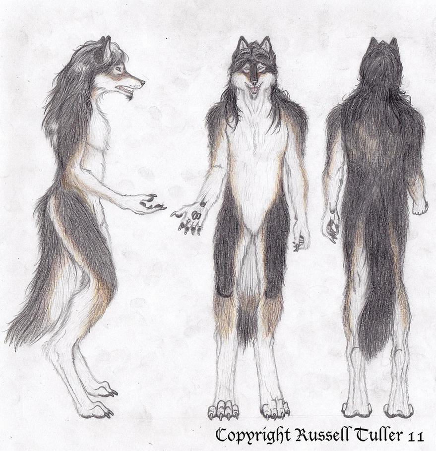 Wolf furry costume - photo#26