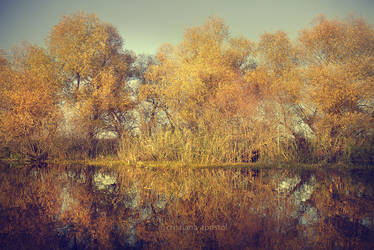 Danube by CristianaApostol